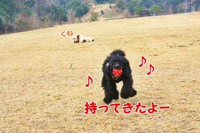 042_20120108211843.jpg