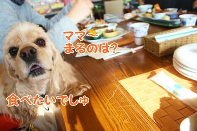 042_20120124211611.jpg