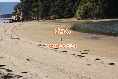 046_20111204214205.jpg