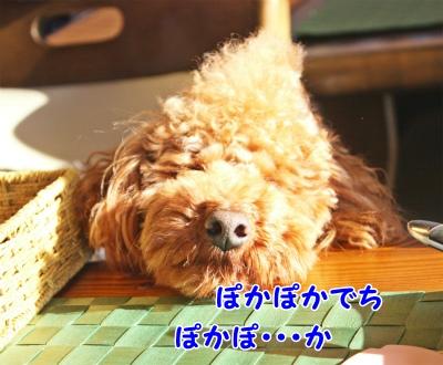 046_20120124211723.jpg