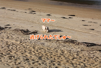 047_20111204214205.jpg
