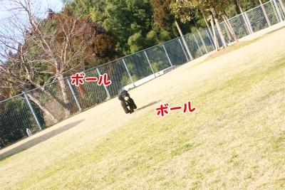 048_20120219234937.jpg
