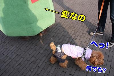 052_20111204153019.jpg