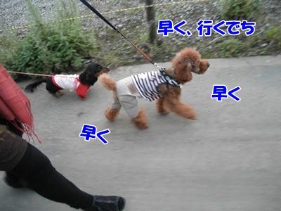 054_20111023225621.jpg