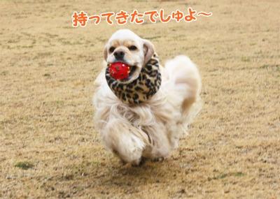 054_20120108211843.jpg
