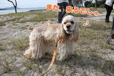 057_20110927225956.jpg