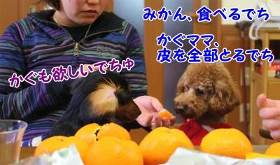057_20111227214616.jpg