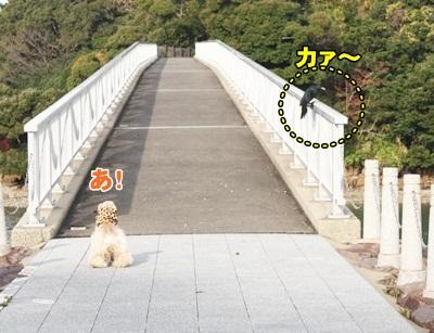 059_20111210224516.jpg