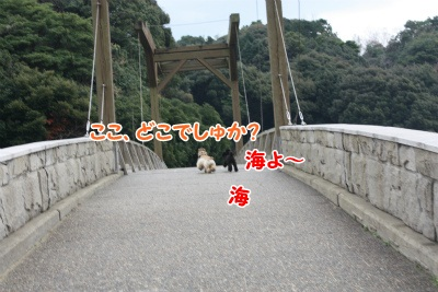 059_20111218190559.jpg
