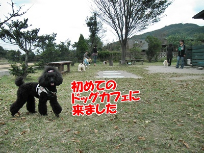 063_20111016153143.jpg