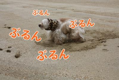 067_20111221220928.jpg