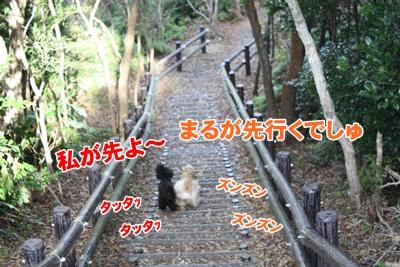 072_20111210225414.jpg
