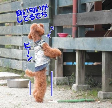 078_20111016153641.jpg