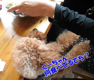 091_20111016153946.jpg
