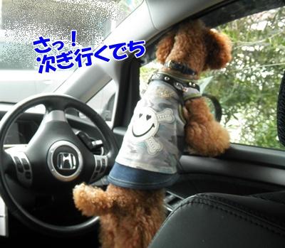 101_20111016154103.jpg