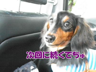 102_20111016155901.jpg