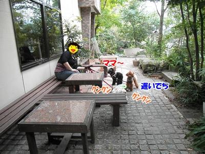 104_20111023224136.jpg