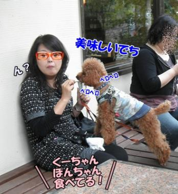 105_20111016154907.jpg