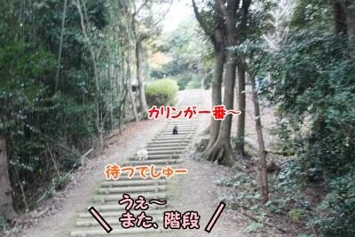 112_20111221221308.jpg