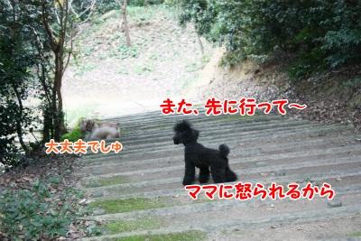 117_20111222222231.jpg