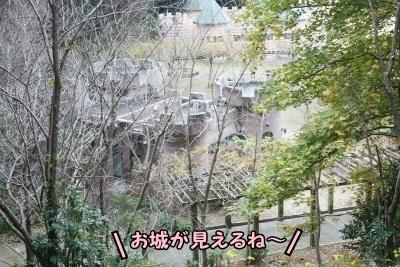 120_20111221221308.jpg