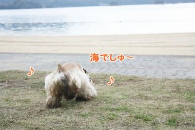 124_20111221221417.jpg
