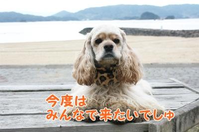 130_20111221221416.jpg