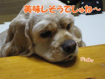 134_20111016160853.jpg