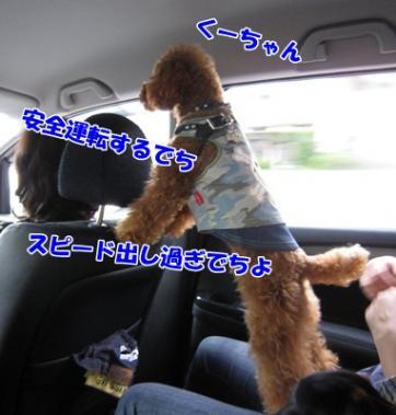 143_20111003212753.jpg