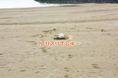 143_20111221221651.jpg