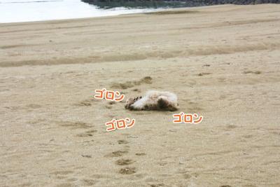 144_20111221221650.jpg