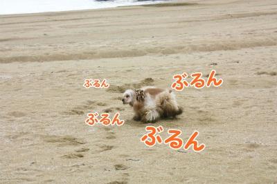 145_20111221221650.jpg