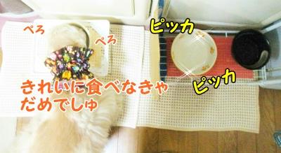177_20120122214906.jpg