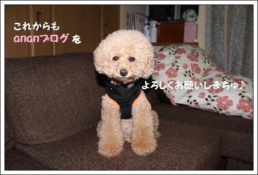 IMG_0632(1).jpg
