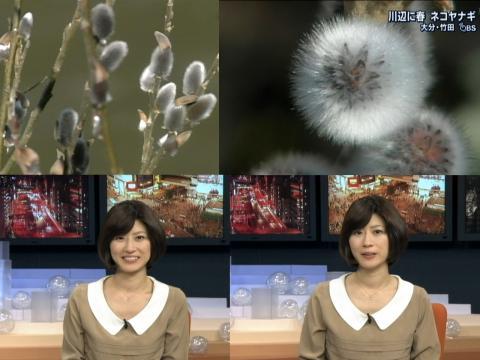 岡村仁美 春の訪れ