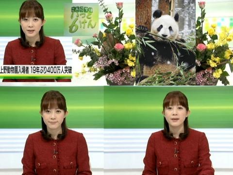 出田奈々 パンダ効果?