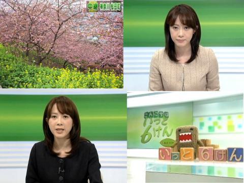 出田奈々 菜の花と河津桜