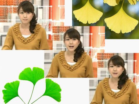 大島由香里 秋色のユカリ