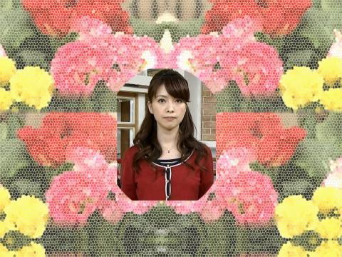 鷲尾 春果 癒しの窓
