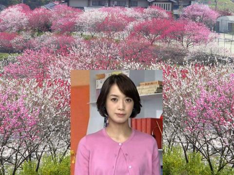 八木 麻紗子 桃の花