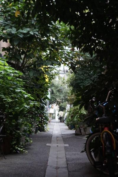 tsukishima081103.jpg
