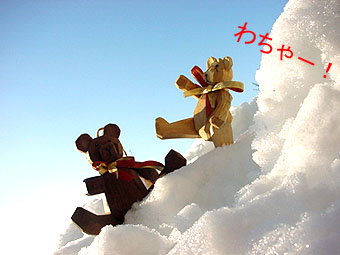 2009-2-26-c.jpg