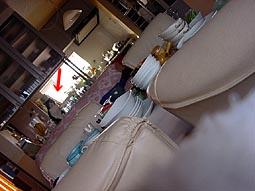 2009-3-11-f.jpg