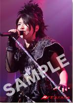 Minori Chihara Live Tour 2009 Parade-LIVE PHOTOBOOK- アニメイト特典画像