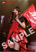 Minori Chihara Live Tour 2009 Parade-LIVE PHOTOBOOK- オフィシャルHP特典画像