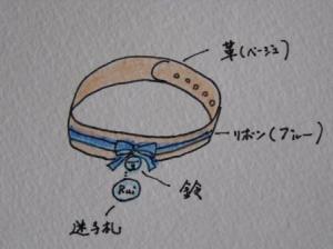 ルイの首輪案