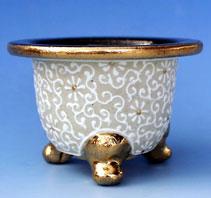 土佐緑用の鉢
