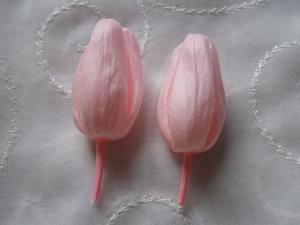 春の花2007-3
