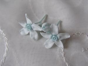 春の花2007-4