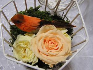 2007春の新作アレンジ1-6